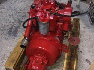 Motore entrobordo diesel per Gozzo