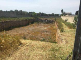 Terreno a Porto cesareo