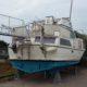 Barca a motore Moonraker 36